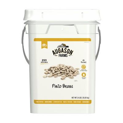 Augason Farms Pinto Beans Emergency Bulk Food Storage 4-Gallon Pail 253 Servings