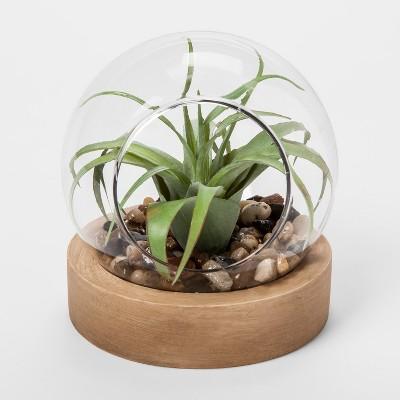 Glass Terrarium with Wood Base - Threshold™