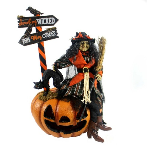 "Halloween 30.0"" Agnes Witch Fiber Optic - image 1 of 3"