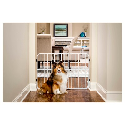 Carlson Expandable Gate with Small Pet Door - White