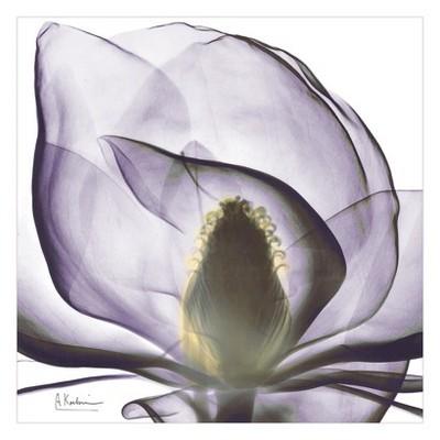 Art.com - Precious Orchid Art Print