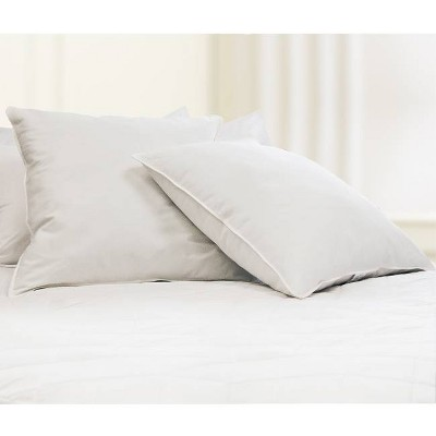 Feather Filled Euro Square Pillow White 2pk - Blue Ridge Home Fashions