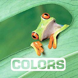 Colors - (Picture This)by Marie Vendittelli (Board Book)