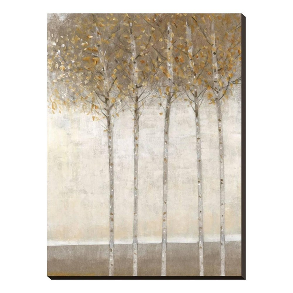 Early Fall I By Tim O'Toole Stretched Canvas Print 25x33 - Art.com, Multicolored