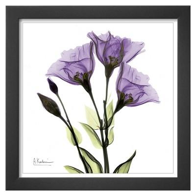 Art.com - Gentian Trio in Purple Framed Print