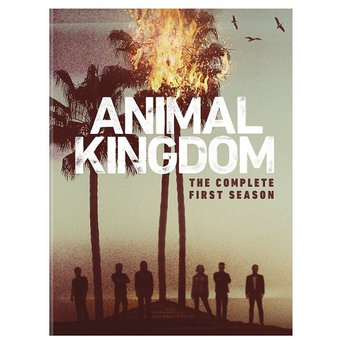 Animal Kingdom: Complete First Season (DVD) - image 1 of 1