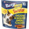 Busy Bone Twisted Chewy Dog Treat - image 4 of 4