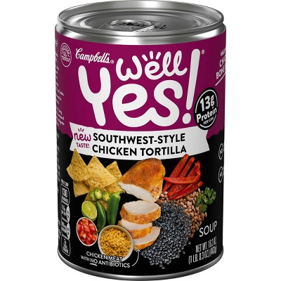 Well Yes! Southwest-Style Chicken Tortilla Soup - 16.3oz
