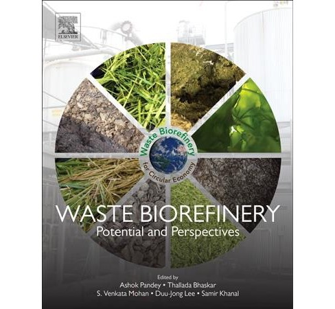 Waste Biorefinery : Potential and Perspectives -  (Paperback) - image 1 of 1