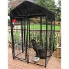Lucky Dog Uptown 4' x 4' x 6' Welded Wire Outdoor Dog Kennel with Heavy Duty Cover - image 2 of 4