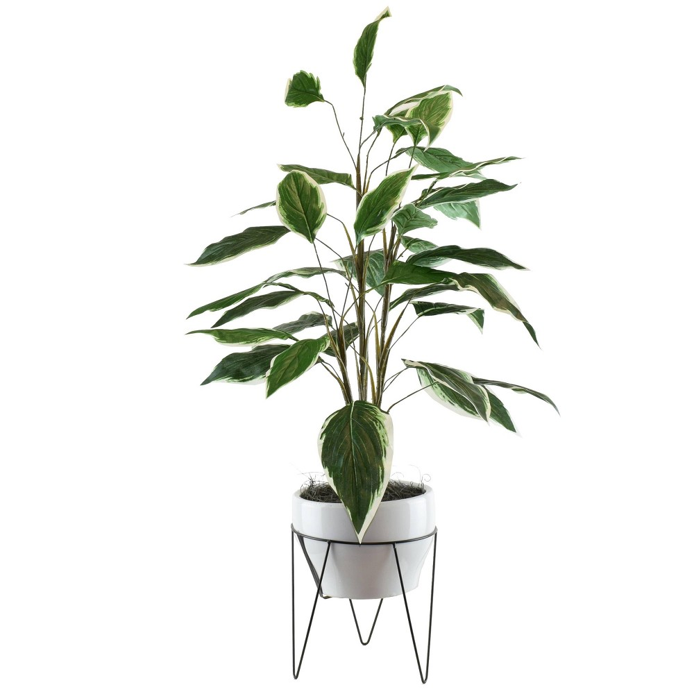 "Image of ""42"""" x 22"""" Artificial Dieffenbachia in Mid Century Plant Stand Green/White - LCG Florals"""