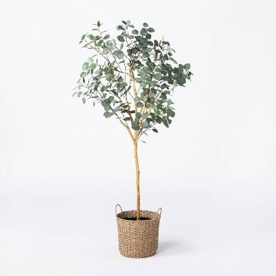 Faux Eucalyptus Tree - Threshold™ designed with Studio McGee
