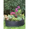 Big Bag Bed Junior - Gardener's Supply Company - image 2 of 4