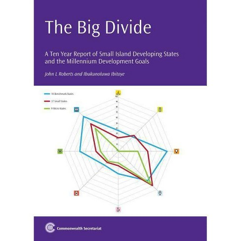 The Big Divide - by  John L Roberts & Ibukunoluwa Ibitoye (Paperback) - image 1 of 1