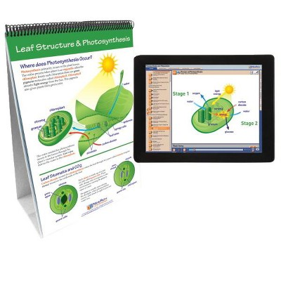 NewPath Learning Photosynthesis & Cellular Respiration Flip Chart and Online Multimedia Lesson