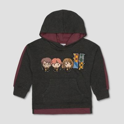 Toddler Boys' Harry Potter Hogwarts Sweatshirt - Charcoal Heather 2T