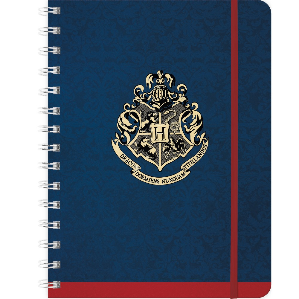 Harry Potter 2019 Planner 6.25x 8, Multi-Colored