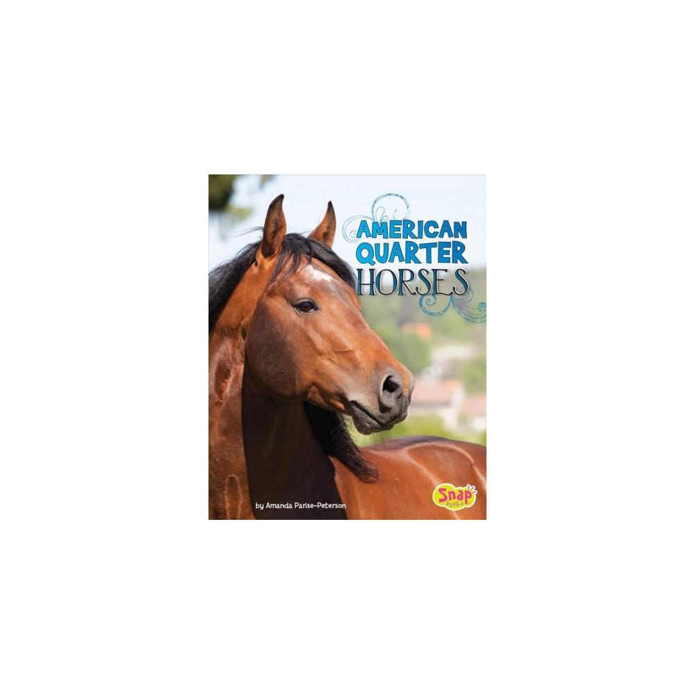 American Quarter Horses - (Snap) by Amanda Parise-Peterson (Paperback)
