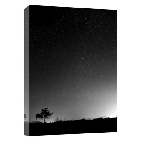 "A Night In The Desert Decorative Canvas Wall Art 11""x14"" - PTM Images - image 1 of 1"