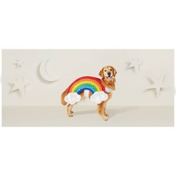 Rainbow Dog & Cat Costume - Hyde & EEK! Boutique™
