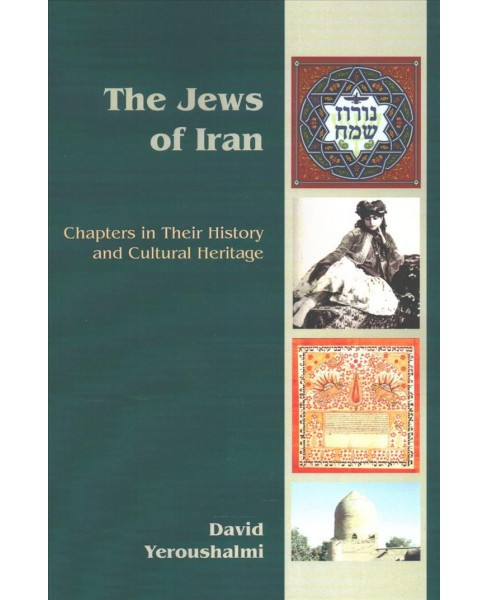 Jews of Iran : Chapters in Their History and Cultural Heritage (Paperback) (David Yeroushalmi) - image 1 of 1