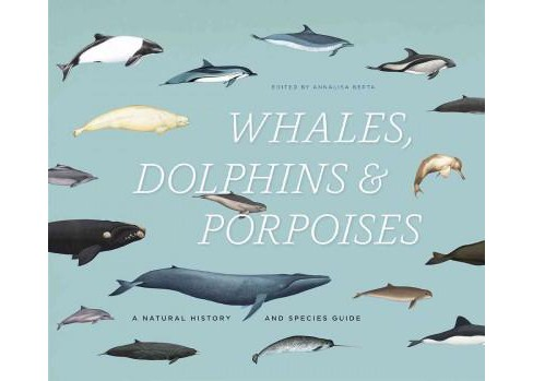 Whales, Dolphins, & Porpoises : A Natural History and Species Guide (Hardcover) - image 1 of 1
