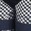 navy/white with gingham