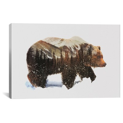 """18"""" x 26"""" Arctic Grizzly Bear by Andreas Lie Canvas Print Brown - iCanvas"""