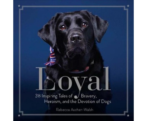 Loyal : 38 Inspiring Tales of Bravery, Heroism, and the Devotion of Dogs (Hardcover) (Rebecca - image 1 of 1
