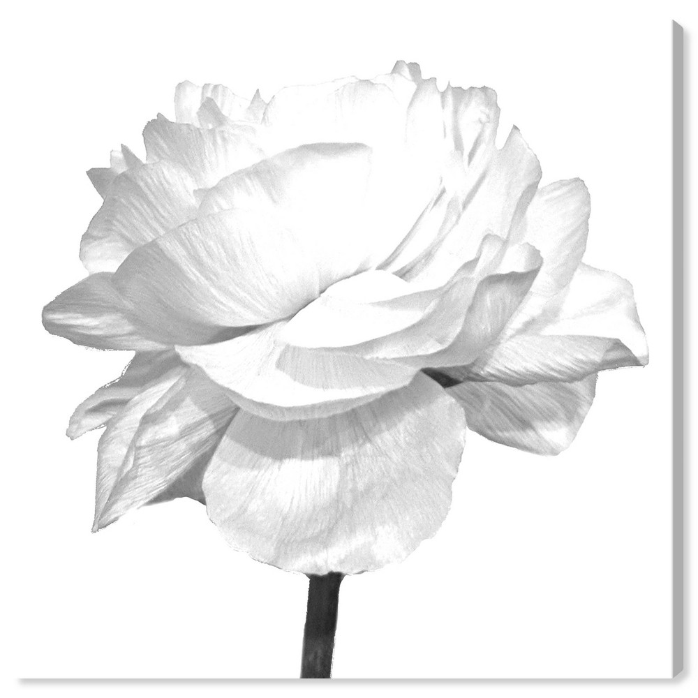 Image of 12'' x 12'' Blooming Flower Blanc Due Unframed Wall Canvas White - Oliver Gal