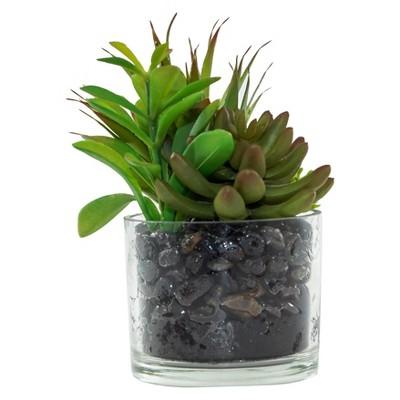Artificial Succulent Arrangement in Glass Pot Green 7  - Lloyd & Hannah