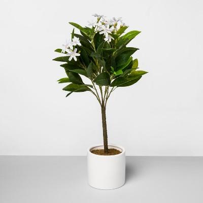 "21"" x 14"" Artificial Lemon Blossom Arrangement In Ceramic Pot Yellow/White - Threshold™"