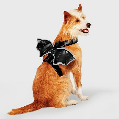 Bat Wings Rider Dog and Cat Costume - Hyde & EEK! Boutique™