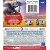 Dumbo Live Action (Blu-Ray + DVD + Digital) - image 2 of 2