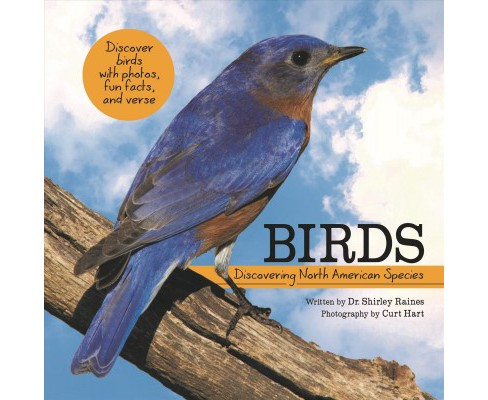 Birds : Discovering North American Species -  by Shirley Raines (Hardcover) - image 1 of 1