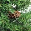 Northlight 3' Unlit Artificial Christmas Tree Full Dakota Pine - image 2 of 3