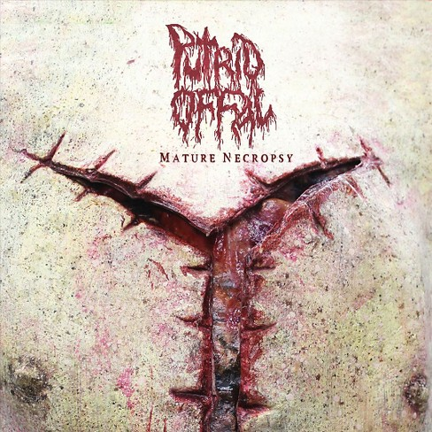 Putrid offal - Mature necropsy (Vinyl) - image 1 of 1