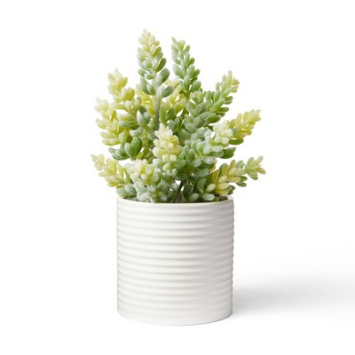 """9.5"""" x 5"""" Faux Succulent Plant in Ribbed Pot White - Hilton Carter for Target"""