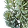 """Artificial (Pk/3) Sedum Pick (8"""") Green/Red - Vickerman - image 2 of 4"""