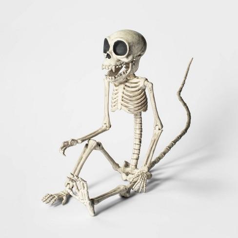 Large Monkey Skeleton Halloween Decorative Prop - Hyde & EEK! Boutique™ - image 1 of 1