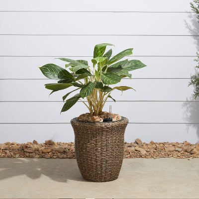 Ocala Curved Oval Self-Watering Planter Mocha - Vifah