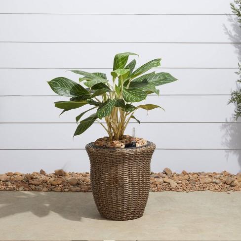 Ocala Curved Oval Self-Watering Planter Mocha - Vifah - image 1 of 4