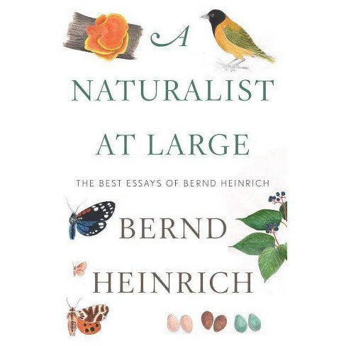 A Naturalist at Large - by  Bernd Heinrich (Hardcover) - image 1 of 1