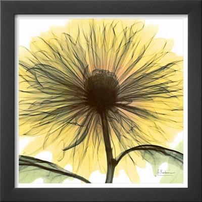 Art.com - Dream in Yellow Framed Print