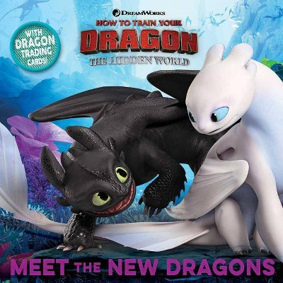Meet the New Dragons -  by Maggie Testa (Paperback)