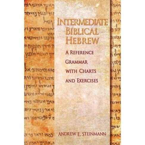 Intermediate Biblical Hebrew - by  Andrew E Steinmann (Paperback) - image 1 of 1