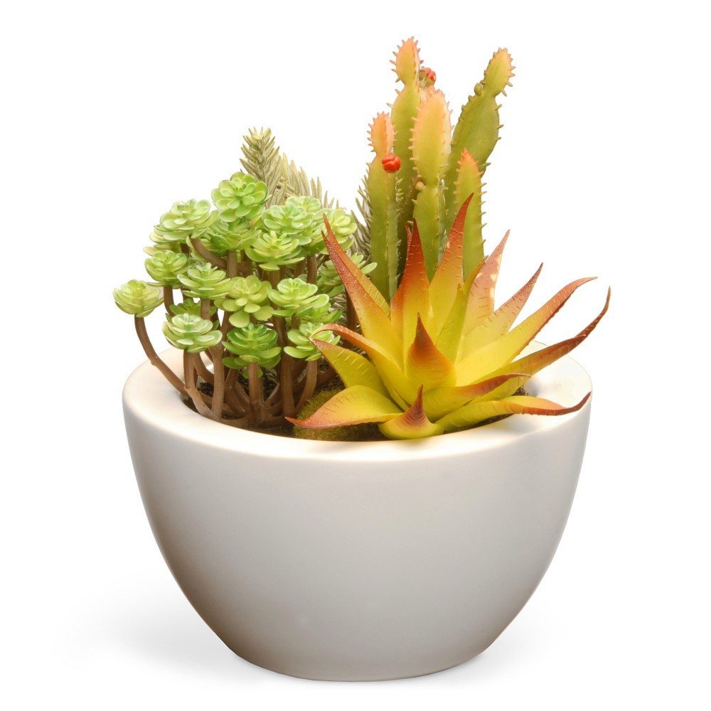 """Artificial Succulent Plants Green 7.5"""" - National Tree Company"""