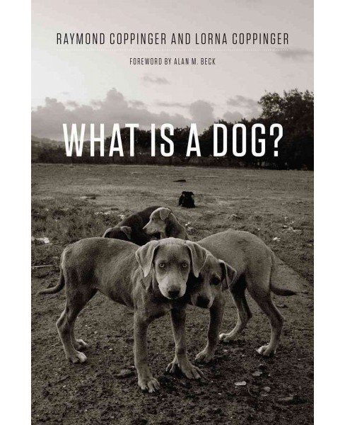 What Is a Dog? (Reprint) (Paperback) (Raymond Coppinger & Lorna Coppinger) - image 1 of 1