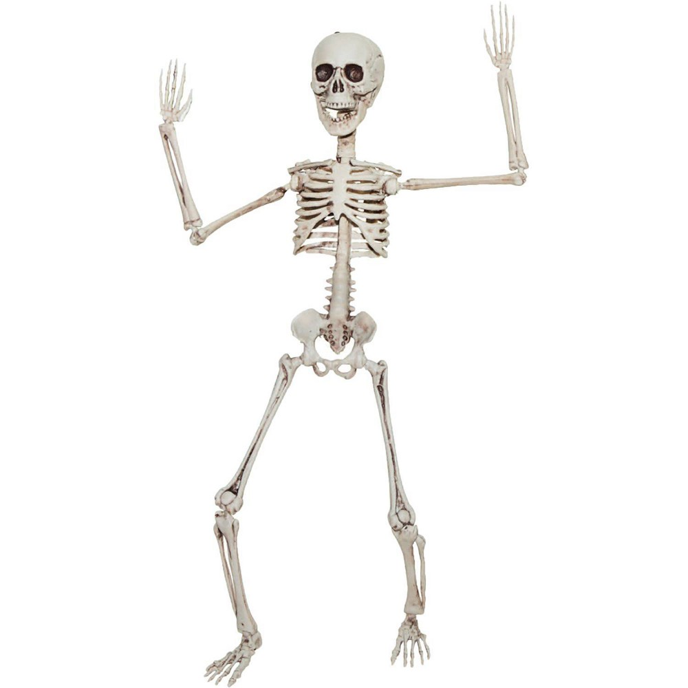 "Image of ""20"""" Halloween Poseable Skeleton"""