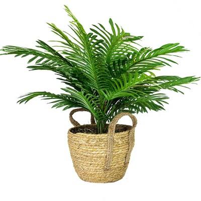 """24"""" x 20"""" Artificial Phoenix Palm Plant in Boho Basket - LCG Florals"""